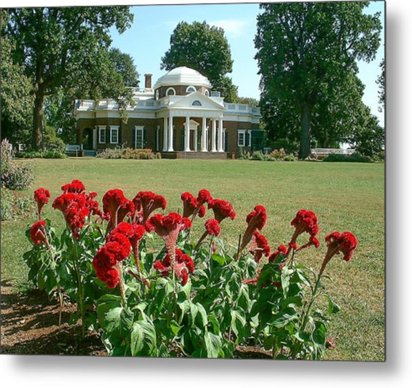 Monticello Cockscomb In Bloom Metal Print