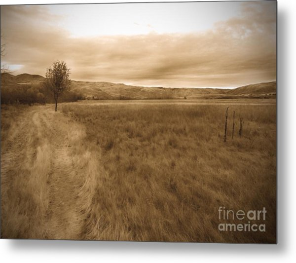 Montour Metal Print by Kimberly Maiden