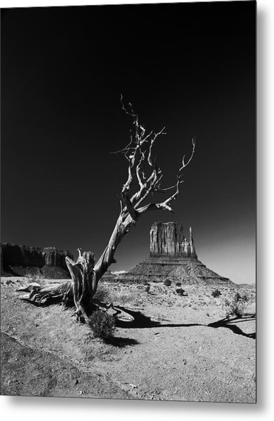 Monument Metal Print by Vinicio Triglia