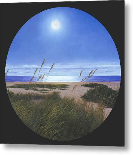 Moon Light  Metal Print
