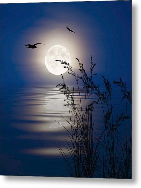Moon Light Silhouettes Metal Print