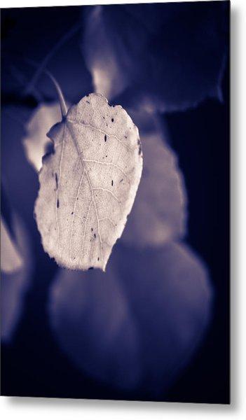 Moonlit Aspen Leaf Metal Print