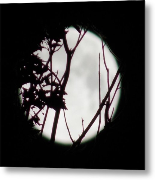 Moonshine 2 Metal Print