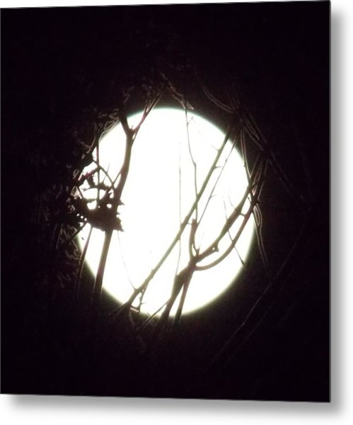 Moonshine 3 Metal Print