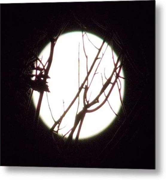 Moonshine 4 Metal Print