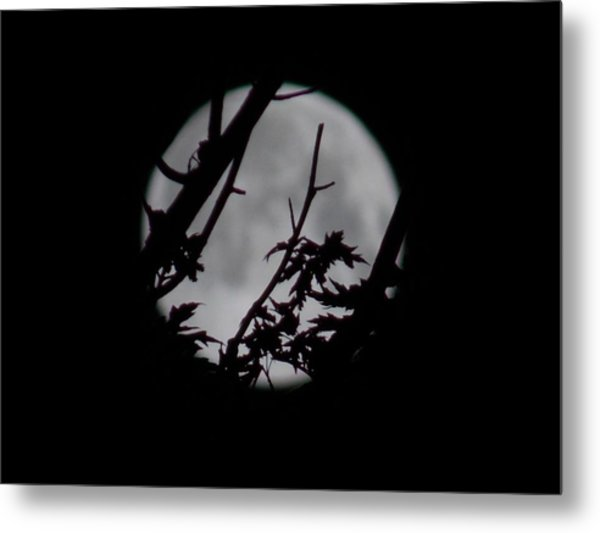 Moonshine 6 Metal Print