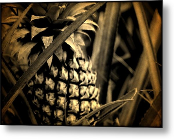 Moorea Pineapple Metal Print