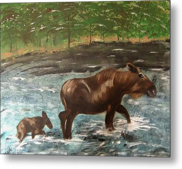 Moose Crossing Metal Print