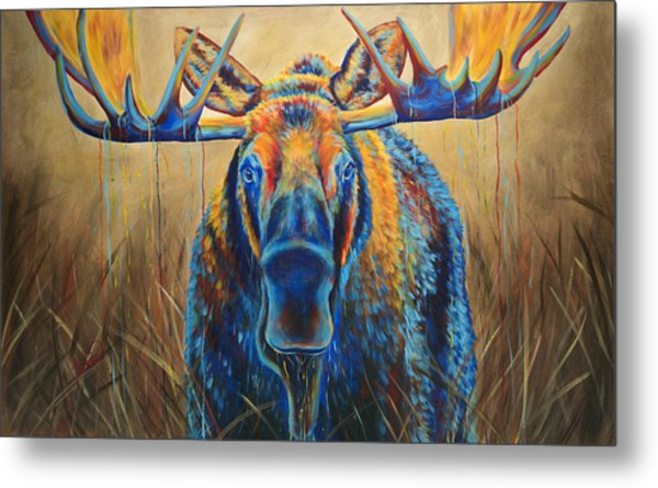 Moose Marsh Metal Print by Teshia Art