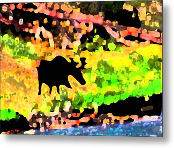 Moose Strolling Along The River Bank Metal Print by Dane Ann Smith Johnsen