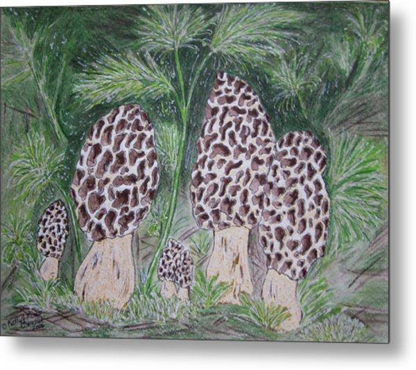 Morel Mushrooms Metal Print