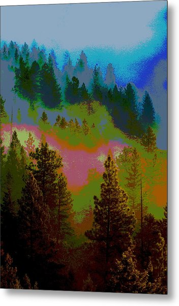 Morning Arrives In The Pacific Northwest Metal Print
