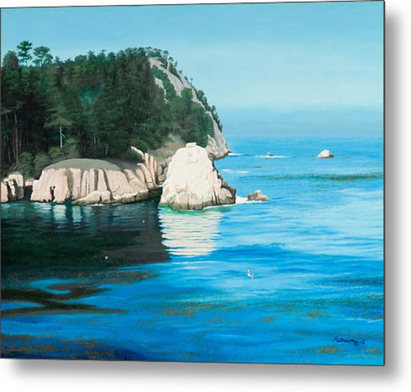 Morning At Point Lobos #2 Metal Print