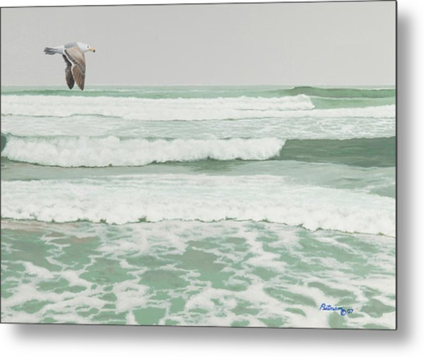 Morning At Pomponio Shore Patrol Metal Print