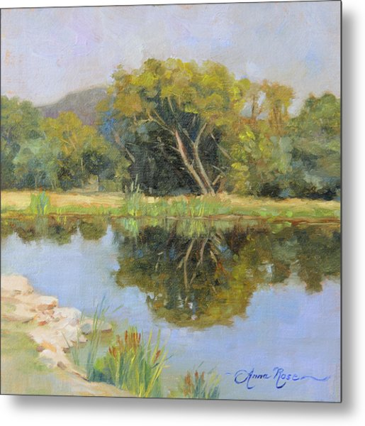 Morning Calm In Texas Summer Metal Print