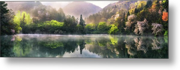 Morning Calm Metal Print by Tiger Seo