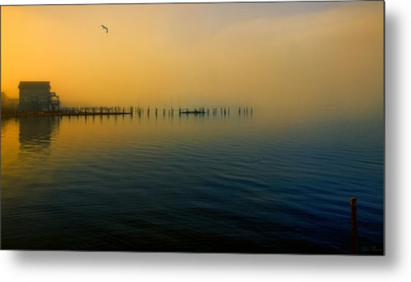 Morning Comes On The Bay Metal Print