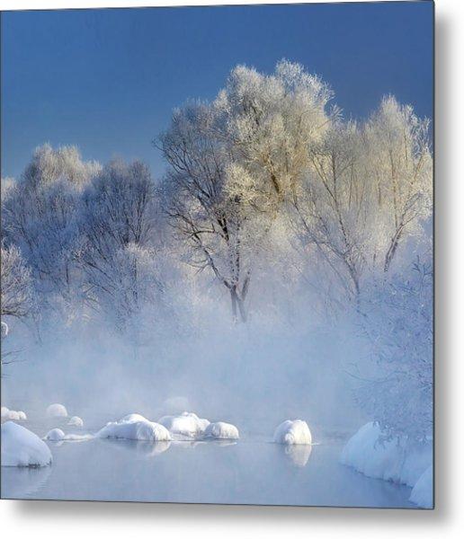 Morning Fog And Rime In Kuerbin Metal Print