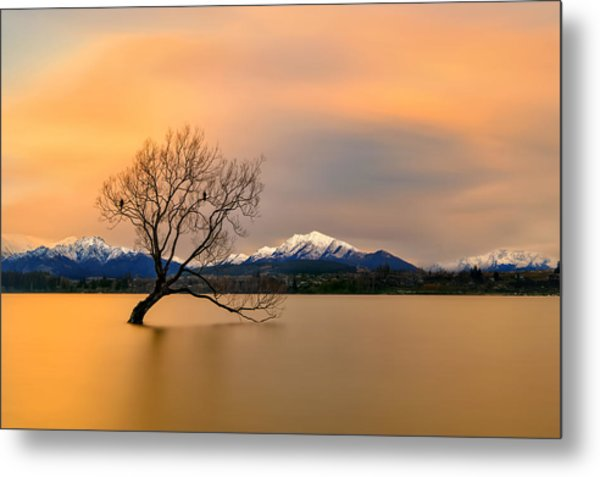 Morning Glow Of The Lake Wanaka Metal Print