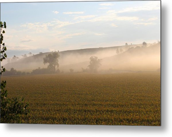 Morning In Iowa Metal Print by Angie Phillips