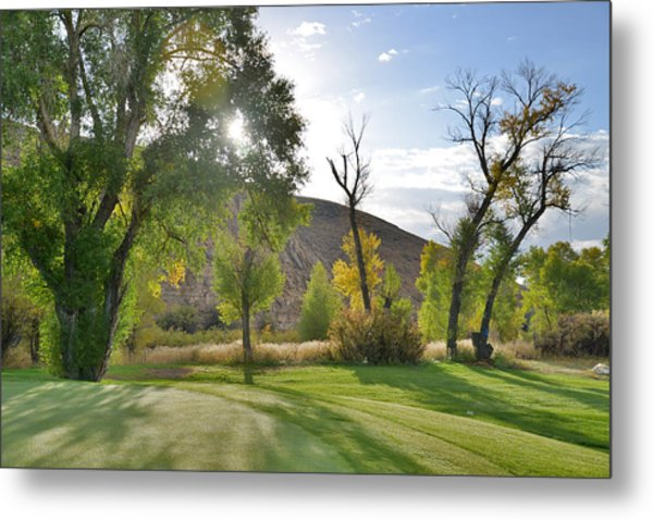 Morning Light At The Rolling Green Cc Metal Print