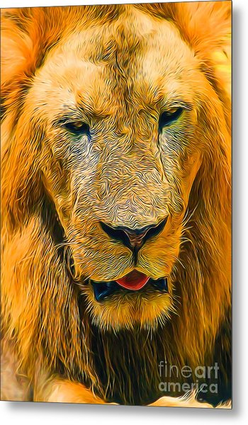 Morning Lion Metal Print
