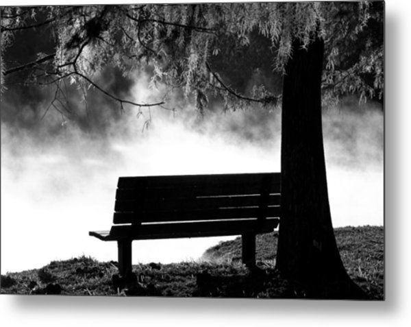 Morning Mist At The Spring Metal Print
