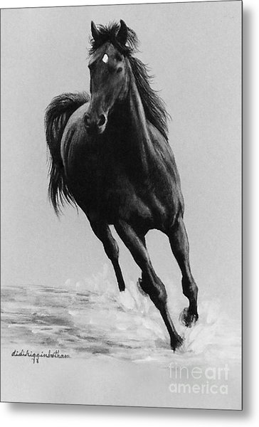 Morning Romp Metal Print