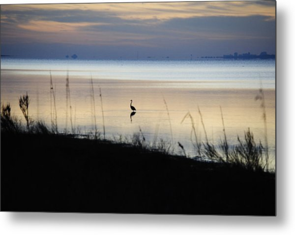 Morning Solitude Metal Print by Michele Kaiser