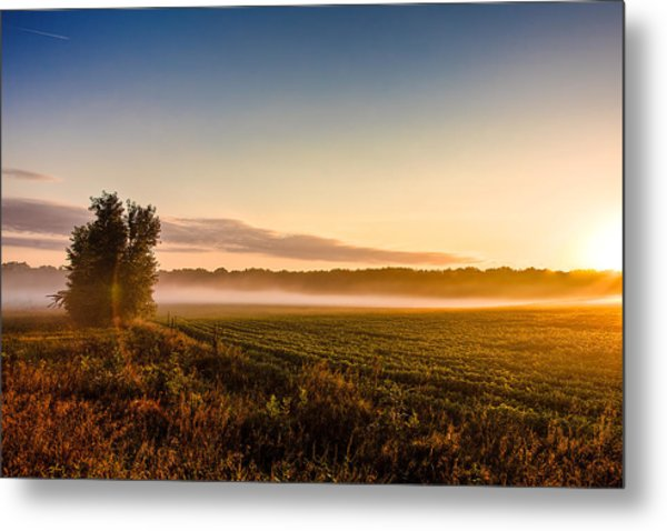 Morning Sun Over Farmland Metal Print