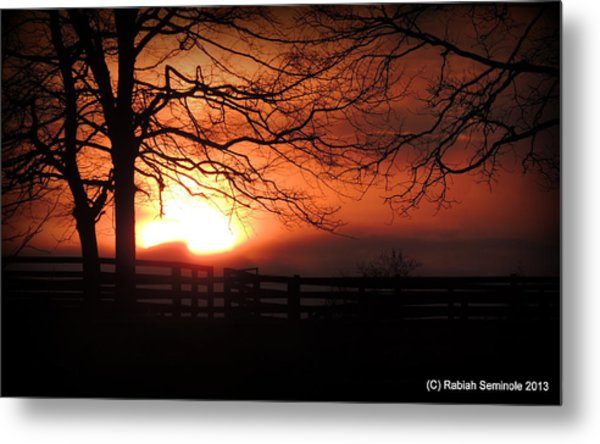 Morning Sunrise Metal Print