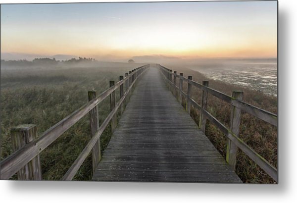 Morning Walk. Metal Print