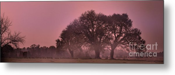 Morning Whispers In Mississippi Metal Print