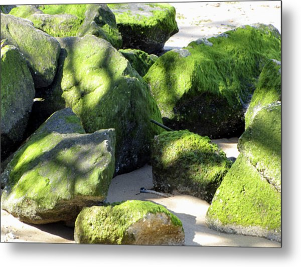 Moss On The Rocks Metal Print
