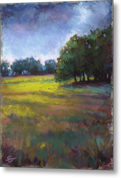 Moss Meadows Metal Print