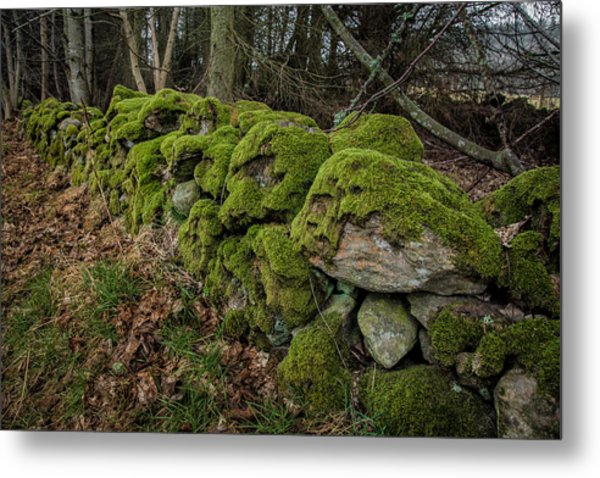Mossy Stone Fence Metal Print