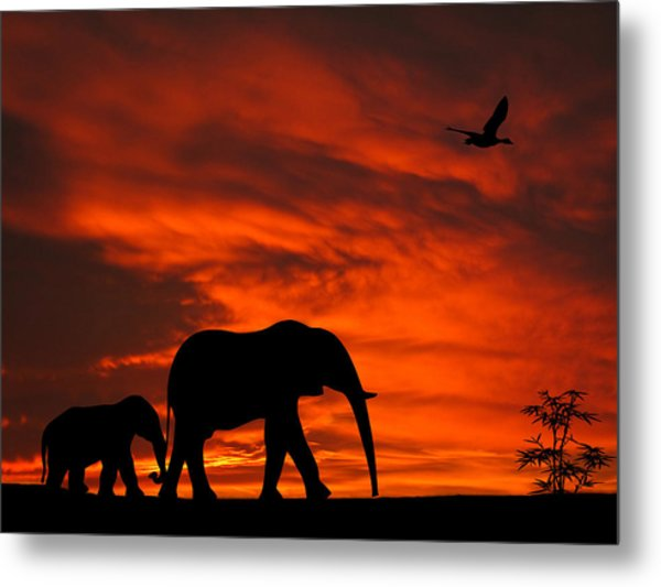 Mother And Baby Elephants Sunset Silhouette Series Metal Print