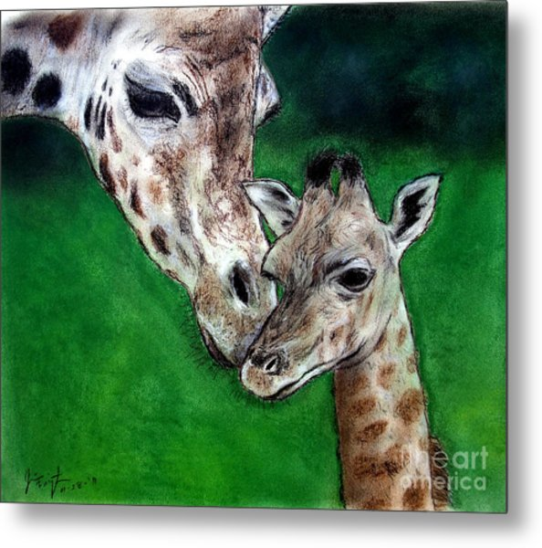 Mother And Baby Giraffe Metal Print