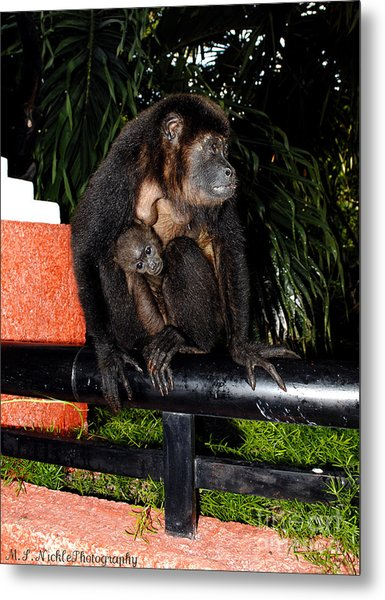 Mother And Child Metal Print by Melissa Nickle