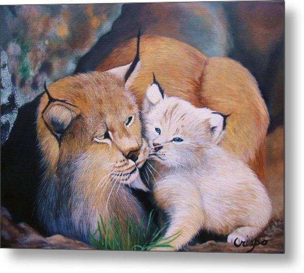 Mother And Kitten Bobcat Metal Print