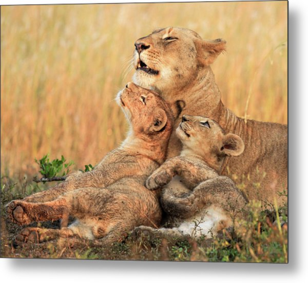 Mothers Love Metal Print