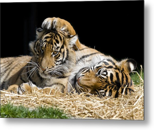 Mothers Loving Touch Metal Print