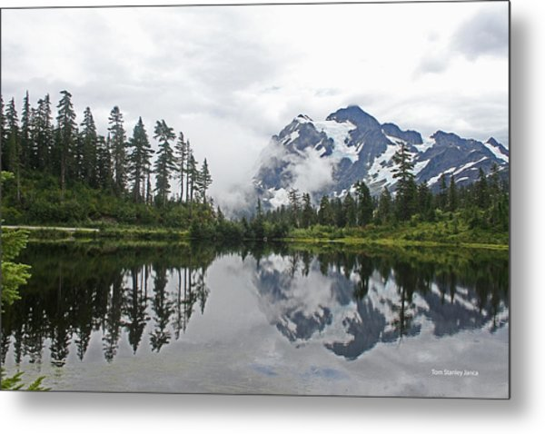 Mount Baker- Lake- Fir Trees And  Fog Metal Print