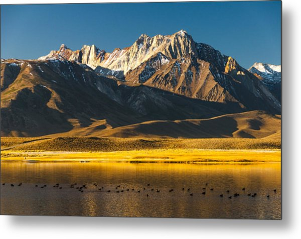 Mount Morrison At Sunrise Metal Print