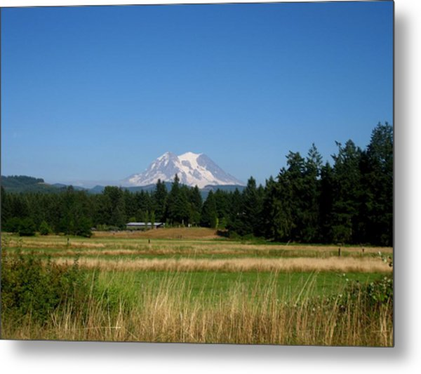 Mount Rainier 8 Metal Print by Kathy Long