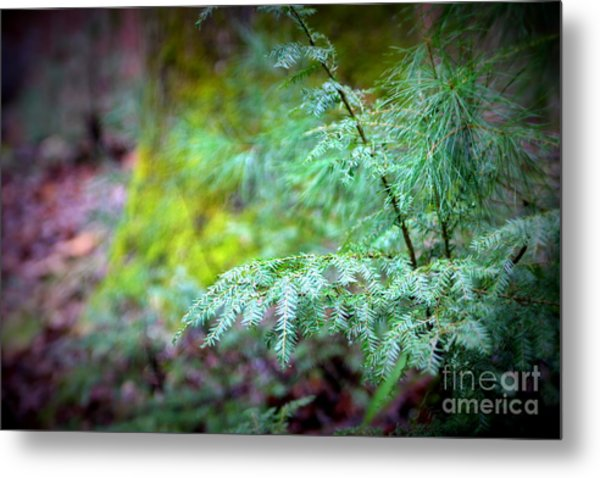 Mountain Fauna Metal Print