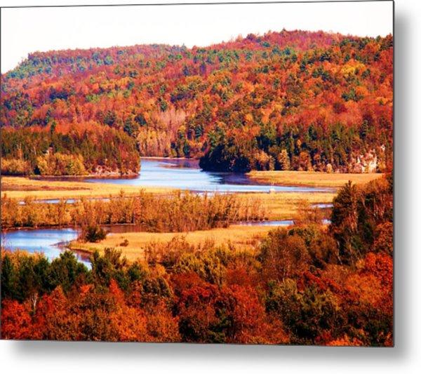 Mountain Foliage Series 029 Metal Print