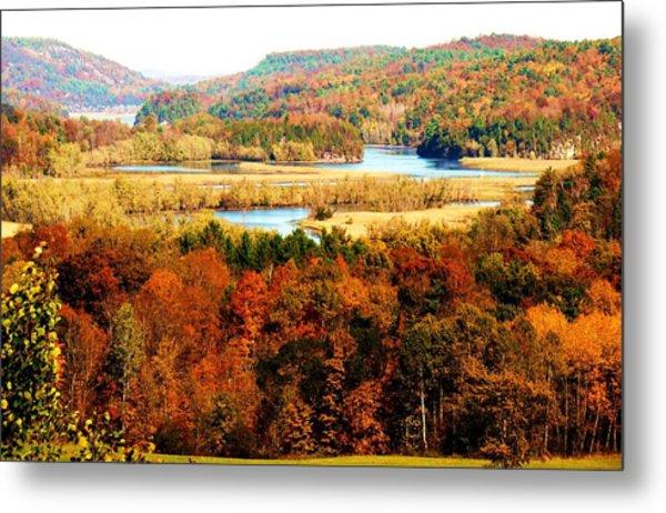 Mountain Foliage Series 033 Metal Print