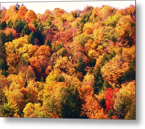 Mountain Foliage Series 054 Metal Print