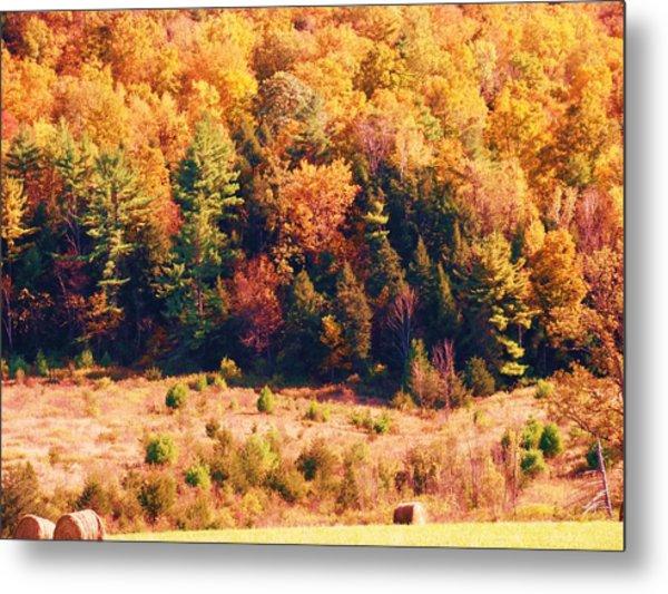 Mountain Foliage Series 057 Metal Print